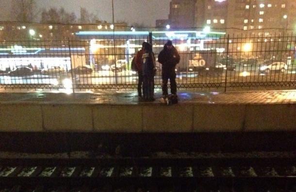 Мужчина попал под электричку на «Проспекте Славы»