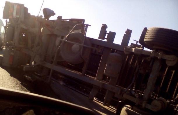 Фура встала на бок в массовой аварии на КАД