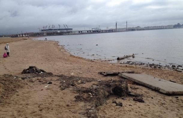 После запроса «Моего района» очищен берег парка 300-летия Петербурга