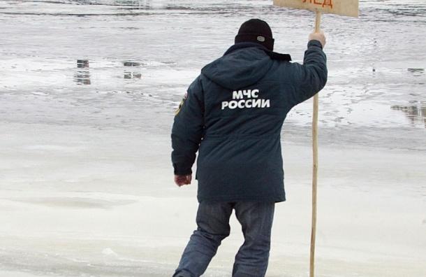 Спасатели переправили с льдины в Финском заливе на берег 80 рыбаков