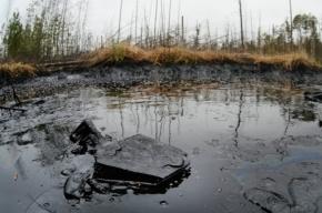 Массовый разлив нефти произошел на Сахалине