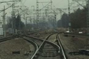 Электричка задавила человека возле Парголово, поезда встали
