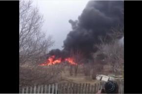 Очевидцы сняли падение самолета в Приморье на камеру