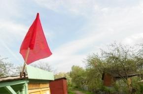 Митинг о проблемах Колпинского района состоится в Металлострое