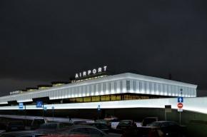 Пулково: аэропорт «не предоставляет наземное обслуживание парнокопытным»