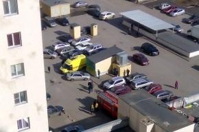 Пятилетний ребенок погиб, выпав с 11-го этажа в Шушарах