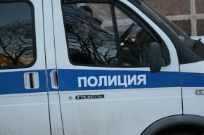 Элитная иномарка врезалась в машину ДПС в Новодевяткино