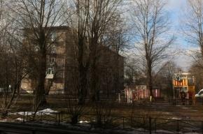 Петербуржцы выступили против уничтожения сквера на проспекте Елизарова