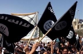 Два десятка турецких вербовщиков ИГИЛ задержали в Москве