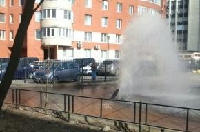 Дворовый фонтан забил на Ленинском проспекте