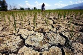 Власти Таджикистана рекомендуют людям запасаться водой и едой