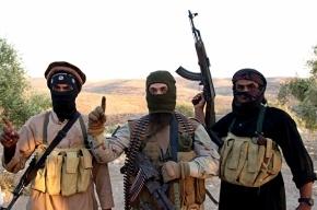 Турция: Россия стала гораздо чаще наносить удары по ИГИЛ, чем по оппозиции