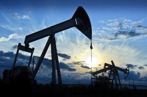 Иран заморозит добычу нефти только после увеличения объемов добычи