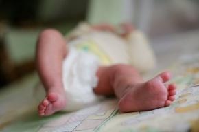 Мертвого младенца нашли в пакете на улице Красного Курсанта