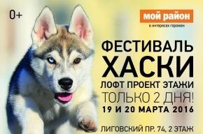 Фестиваль Хаски в Лофт Проекте ЭТАЖИ 19 и 20 марта с 9 до 21
