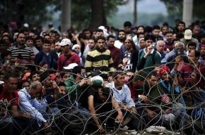 Митрополит Греции: мигранты-захватчики жгут православные иконы