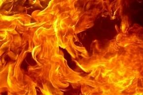 Москвич пытался сжечь себя на северо-востоке города
