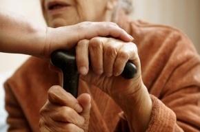 Лжегазовики дерзко ограбили 91-летнюю жительницу Гатчины