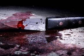 Житель Бокситогорского района Ленобласти устроил резню в деревне Большой Двор