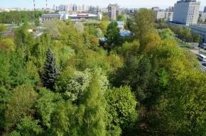 Сад Агрофизического института не застроят