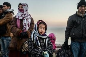 Семейную пару, которая помогла беженцам в Дании, оштрафовали