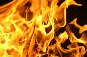 СМИ: онкобольная сожгла себя в своей квартире