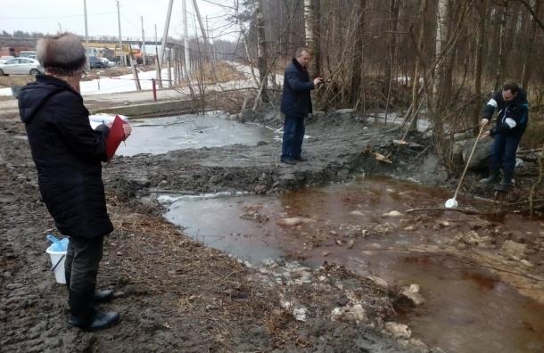 Пробы воды для анализа взяли после прорыва дамбы в «Красном бору»