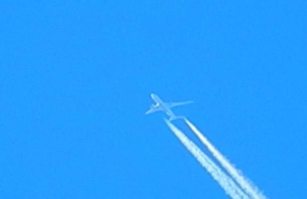 СК назвал предварительную версию крушения самолета в Ростове-на-Дону