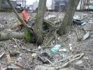 Полежаевский парк или свалка?: Фоторепортаж