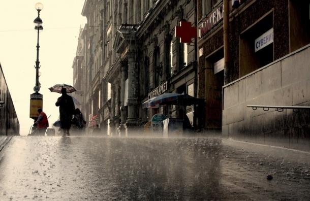 Сильный ветер и мокрый снег обещают завтра в Петербурге