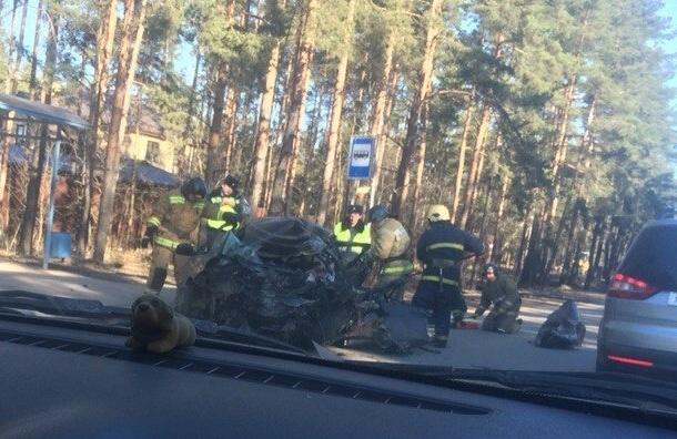 «Фарш» из «Приоры» увидели после лобового столкновения с автобусом во Всеволожске