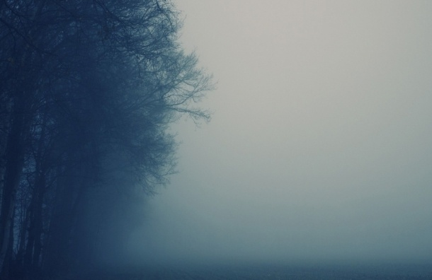 Густой туман накроет Петербург в субботу