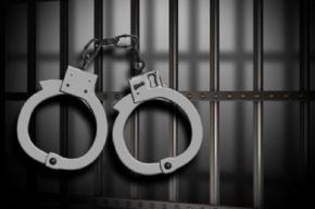 Двоих жителей Ленобласти осудили за убийство, расчленение и сожжение человека
