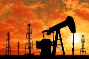 Иран отказался обсуждать заморозку добычи нефти