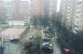 Снег будет идти в Петербурге до пятницы