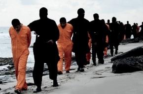СМИ: «Исламское государство» испытывает финансовый кризис