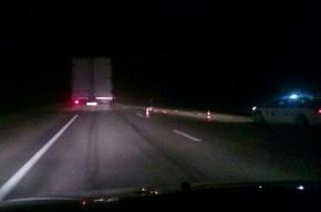 Человека сбили насмерть на Мурманском шоссе