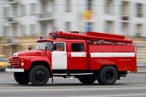 ВАЗ-2106 сгорел в Петергофе