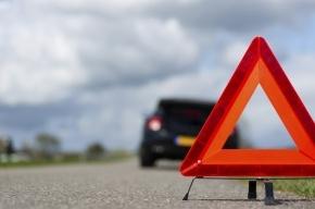 Ребенка сбили на Приморском шоссе