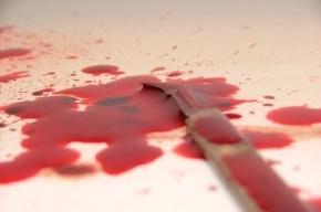 Двое новгородцев ради сумочки убили петербурженку в парадной на Есенина