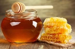 Пожилой петербуржец с плохим зрением купил мед за 400 тысяч