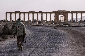 ЮНЕСКО приняла российские предложения по восстановлению Пальмиры
