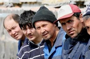 Медведев считает, что миграционное законодательство необходимо ужесточать