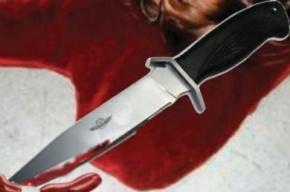 Дальнобойщика из Пензы подозревают в убийстве экспедитора в Петербурге