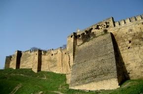 Купюру в 2000 рублей предлагают сопроводить изображением дагестанской крепости