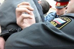 Петербужцу грозит тюрьма за драку с полицейским