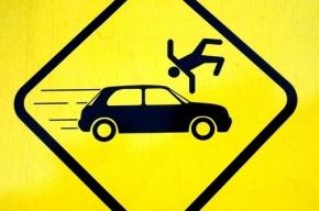 Новый дорожный знак «зона торможения» будут ставить в местах, где сбивали людей