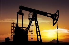 Забастовка вынудила Кувейт сократить добычу нефти на 60%