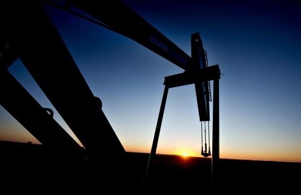 Цена нефти поднялась выше $46 впервые за пять месяцев