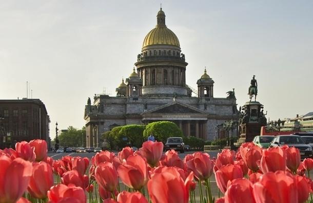 9 мая Петербург ждет солнечная погода